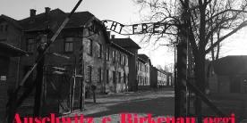 Auschwitz e Birkenau oggi - Immagini dai campi di concentramento di Auschwitz e Birkenau - vai su Fotoinvideo per link youtube