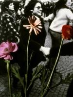 Fleurs du male