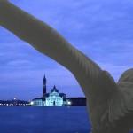Venezia a volo d'aquila
